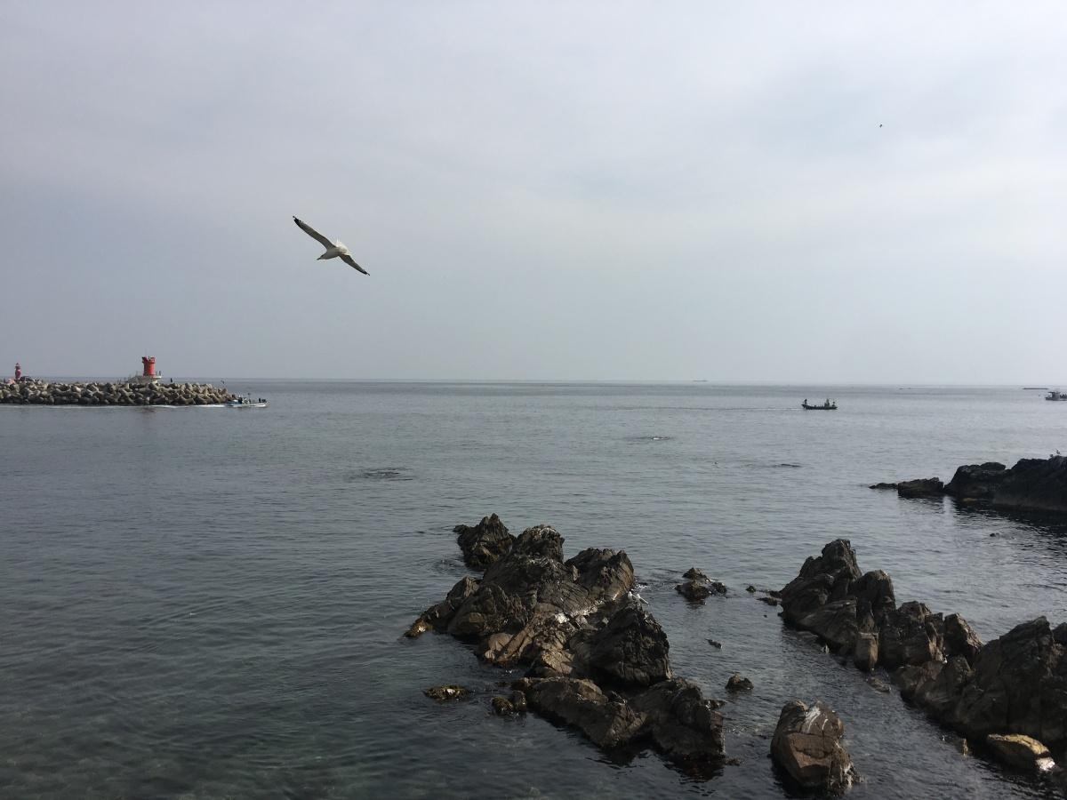 기역의 바다